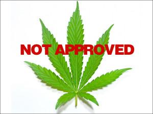 is_150123_marijuana_leaf_800x600